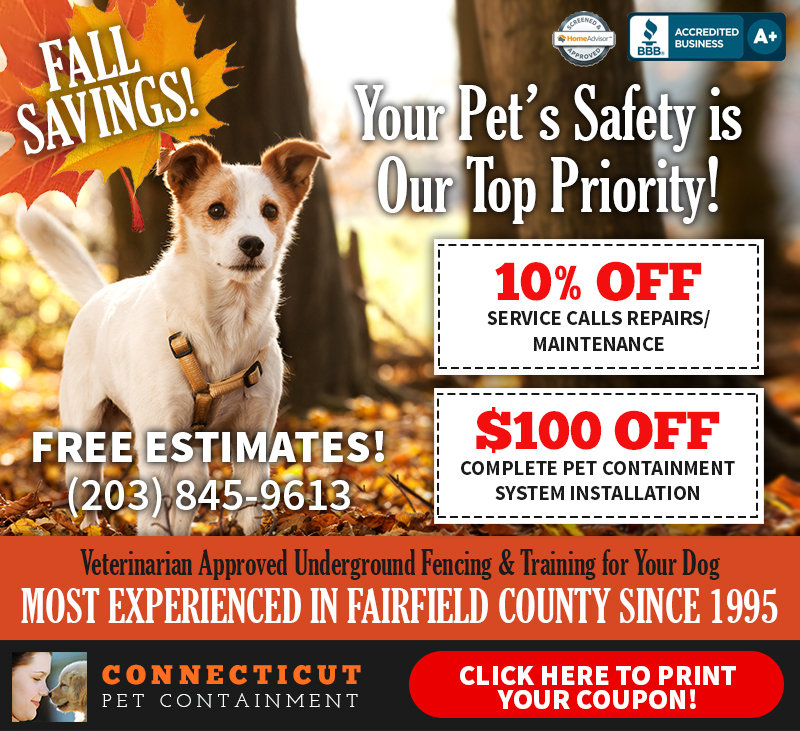 ConnecticutPetContainment-Fall-Coupon